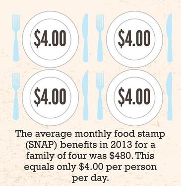 SNAP plates